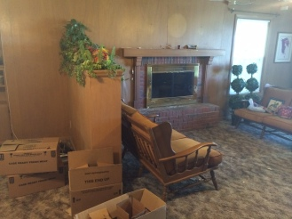 the living room contained old carpet and tons of wood paneling