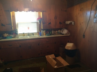 The kitchen was covered in plywood with knotty pine veneer