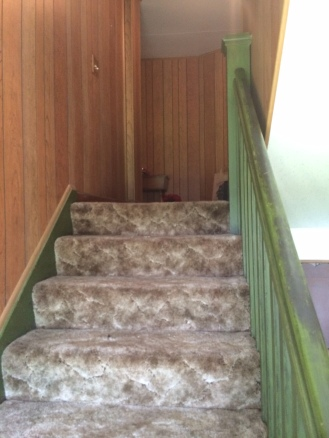 the carpeted stairs going up to the second level