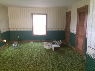 The master bedroom was big but had quirks like this green carpet