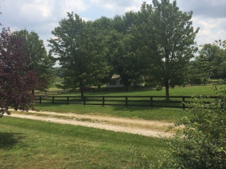 Looking across the front drive to the two care taker's homes on the property.