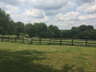 To the right of the hay barn, you can see the edge of the property where the tree line is.